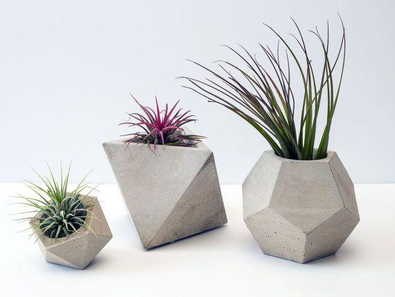 Geométrica Set de 3 jardineras de hormigón / macetas (plantas incluidas)