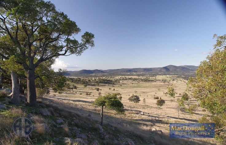 """""""Cleggswood"""" another beautiful grazing property for sale near Uralla."""