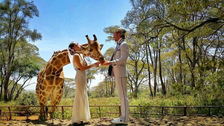The Giraffe Center, Nairobi, Kenya This Creative Couple Got Married In 38 Different Places Around The World • Page 5 of 6 • BoredBug