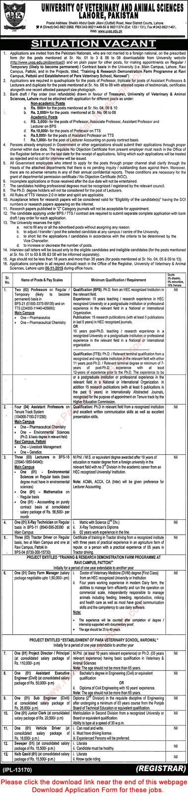 Jobs in Pakistan: University of Veterinary and Animal Sciences Jobs ...