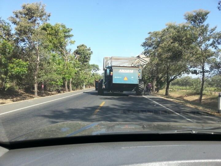 Juguetito en la carretera, León.