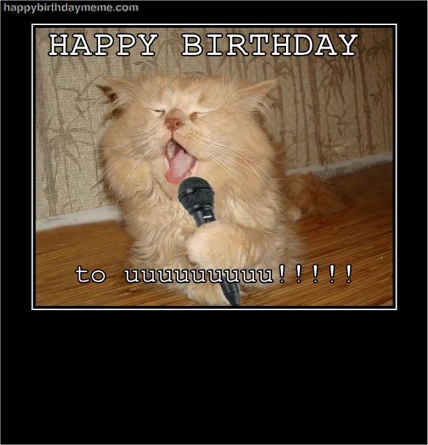 Happy, Happy Birthday And Cats On Pinterest