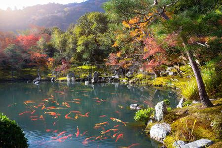 Zen garden of the tenryu ji temple Arashiyama Kyoto Japan Stock Photo