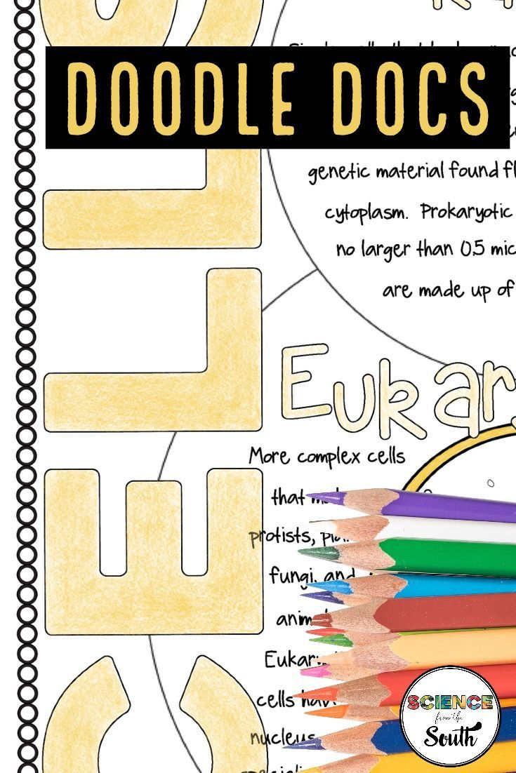 Doodle Docs For Teaching About Prokaryotic And Eukaryotic Cells Elementary Science Activities Science Teaching Resources Cells Lesson [ 1102 x 735 Pixel ]