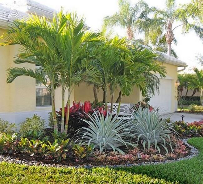 WONDERFUL FLORIDA LANDSCAPING IDEAS FRONT YARDS CURB ... on Backyard Landscaping Ideas With Palm Trees id=98828