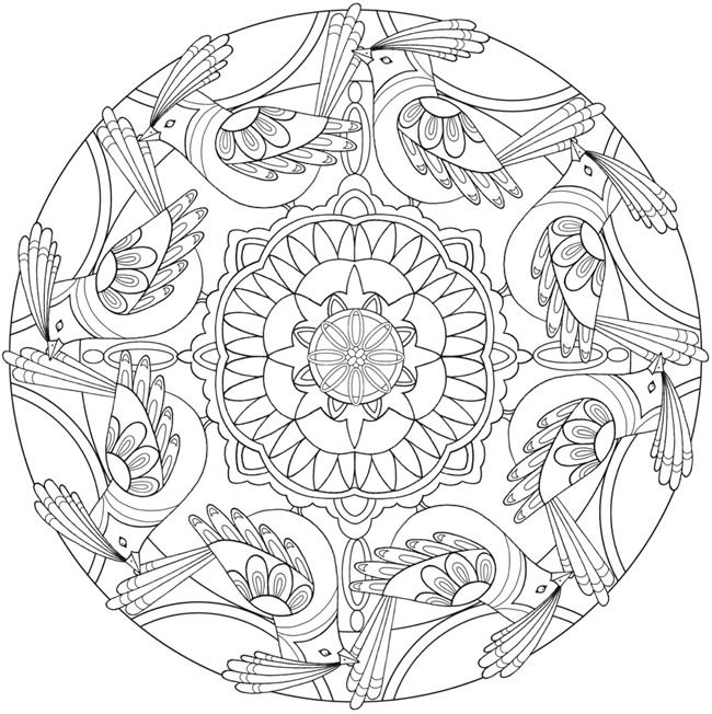 Coloring Page 5 of 6 BIRD MANDALAS by: Jo Taylor a  Creative Haven Coloring Book *** Welcome to Dover Publications
