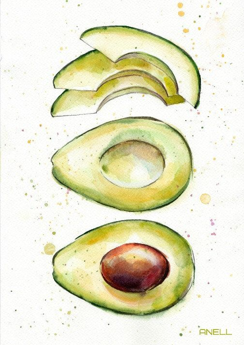 Set of 4 Avocado watercolor Print – Painting – illustration – Avocado Wall decor – Sweet Fashion print – Fruit Food Kitchen print