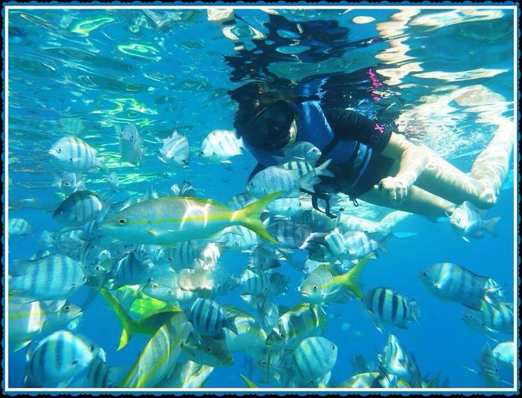 Snorkeling in Sosua, Dominican Republic.