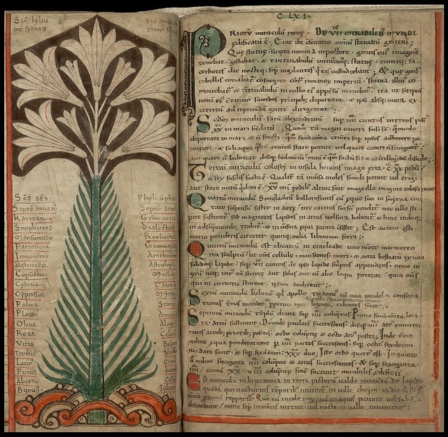 tree - from the 'Liber Floridus' (Book of Flowers), regarded as the first encyclopædia of the High Middle Ages - produced by Lambert, Canon of St Omer, in the NE France/Flanders/Belgium region, ca. 1120