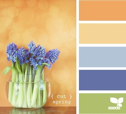 cut spring #Color Palettes