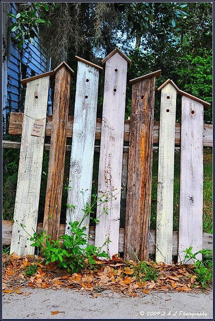 Bird house fencing for the small section of fense between my house and garage- perfect idea!