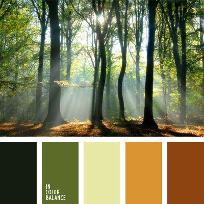 amarillo, amarillo y anaranjado, anaranjado, color espesura del bosque, color verde bosque, color verde oscuro, colores del bosque, colores del bosque mañanero, marrón, tonos verdes, verde y verde oscuro.