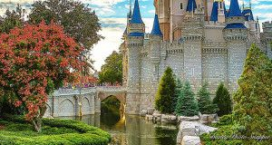Congratulations! You're going to Disney World! It is so exciting, whether it is your first time or your 51st time. Some people feel very strongly that they should not stay on property – they believe that it's too expensive, that they won't be able to handle that much Disney, or they want to be able…