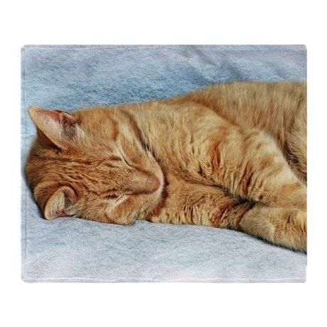 Sleepy Kitty Throw Blanket on CafePress.com