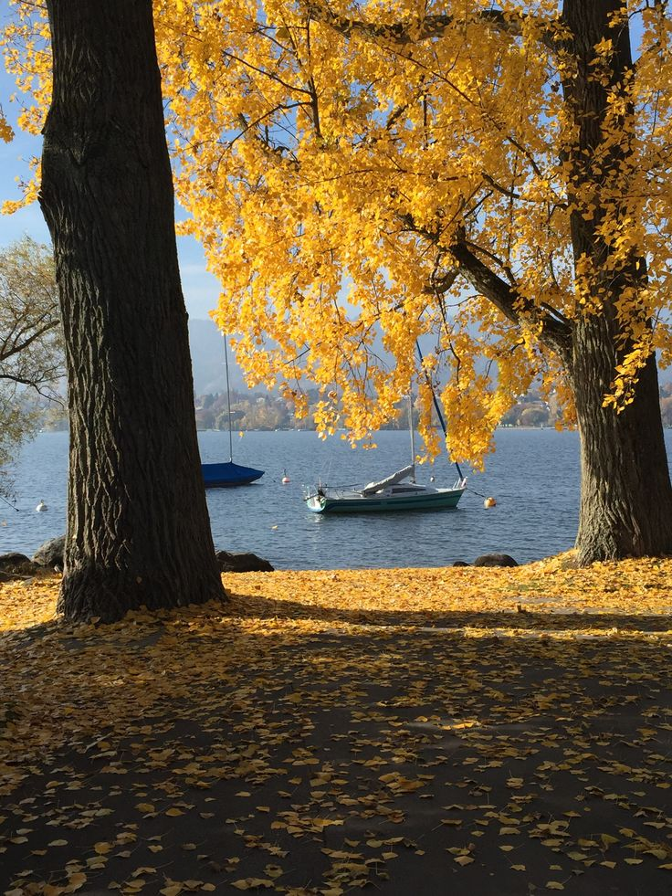Autumn and sailing boats at the lake, Zürich (Photo credit: http://www.lavaleandherworld.wordpress.com)