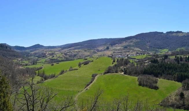 Navarra. Ruta por la selva de Irati, un paraíso verde de hayas y abetos. La selva de Irati es un paraje verde de singular belleza.