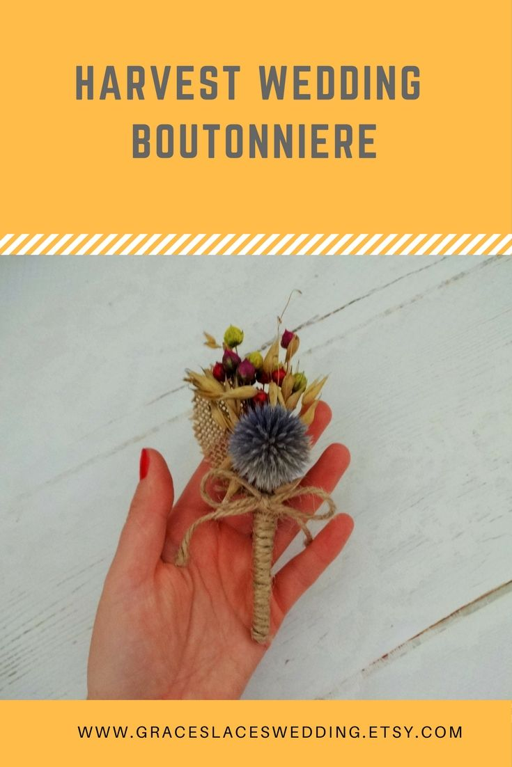 Harvest wedding boutonniere composed of a thistle, dried flowers and dried oats. #harvestwedding #autumnweddingboutonniere #fallweddingboutonniere #burlapboutonniere #bohoboutoniere