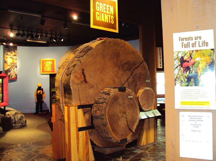 World Forestry Center - Green Giants