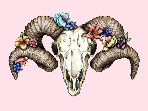Floral Ram Skull A4 Art Print by Hungry Designs on Etsy, $12.00