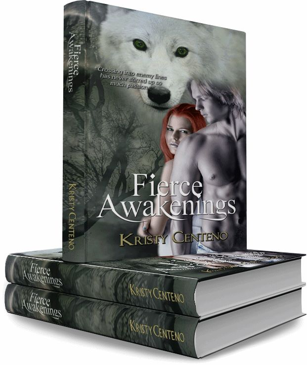 http://blushingdivasbookreviews.com/2014/06/01/cover-reveal-fierce-awakenings-by-kristy-centeno/