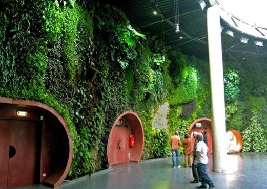 Wonderful vertical gardens - Υπέροχοι κάθετοι κήποι