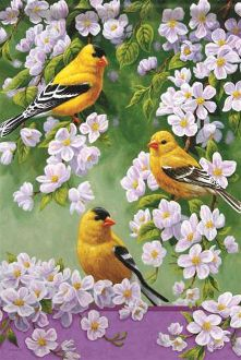 Goldfinch Blossoms Garden Flag FlagTrends CLASSIC FLAGS by Carson