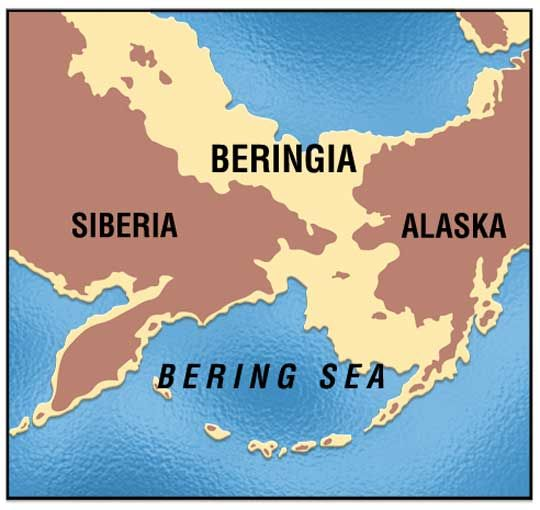 Beringia was an ancient, great land bridge. More than 15,000 years ago, it connected eastern Siberia and western Alaska. A popular theory holds that the land bridge let humans cross into North America. They were following herds of reindeer and mammoths to hunt them. If so, these humans were the first Americans. Then, as the climate warmed, sea levels rose and Beringia became submerged. The first Americans became isolated on their new continent. | Immigration Throughout History | Kids…
