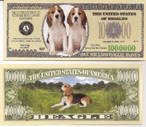 Beagle $Million Dollar$ Novelty Bill Collectible by Beagle Dog Collectible. $1.48. Beagle $Million Dollar$ Novelty Bill Collectible. These bills are the same size and feel of real money. They are finely detaileds and colorful on both front and back with high quality printing. Makes a great gift, collectible or frame and display. Price listed is for 1 bill. Buy as many as you want, still FREE SHIPPING!! Please visit my store for nearly 100 novelty bill styles. All orders shipp...
