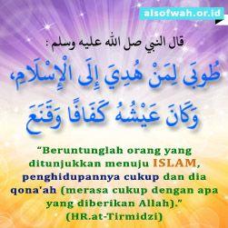 [[do not use, use 'muslim qanaah']]
