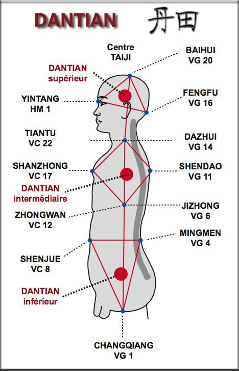 """Dantian is loosely translated as """"elixir field"""", """"sea of qi"""", or simply """"energy center"""". Dantians are important focal points for meditative and exercise techniques such as qigong and in traditional Chinese medicine. Taoist and Buddhist teachers instruct students to center the mind in the navel or lower dantian, to aid control of thoughts and emotions. Acting from the dantian is considered to be related to higher states of awareness or samadhi. http://www.medischeqigong.com/ #qigong"""