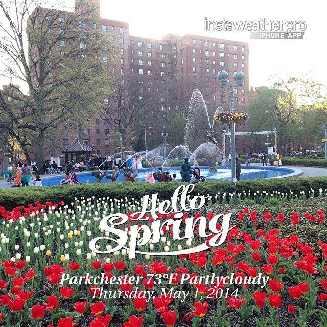70 Best Parkchester Bronx Ny Images On Pinterest