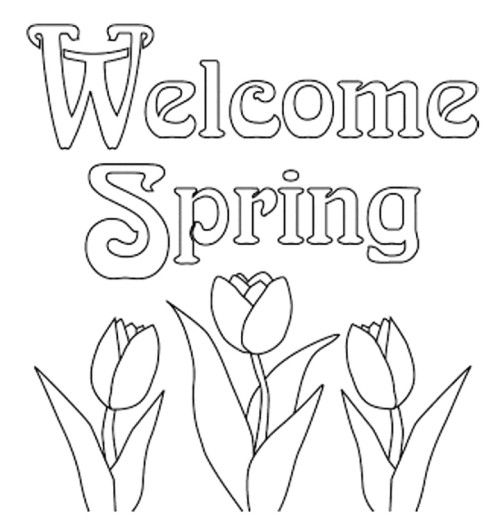 Print Out Spring Flowers Tulips Coloring Pages Line Drawings