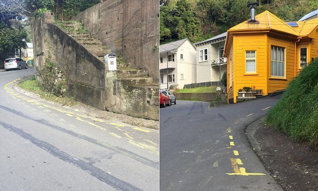 NZ man paints fake yellow lines to stop cars parking