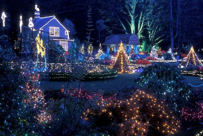 Oregon Coast Christmas Lights In Coos Bay Looks Like