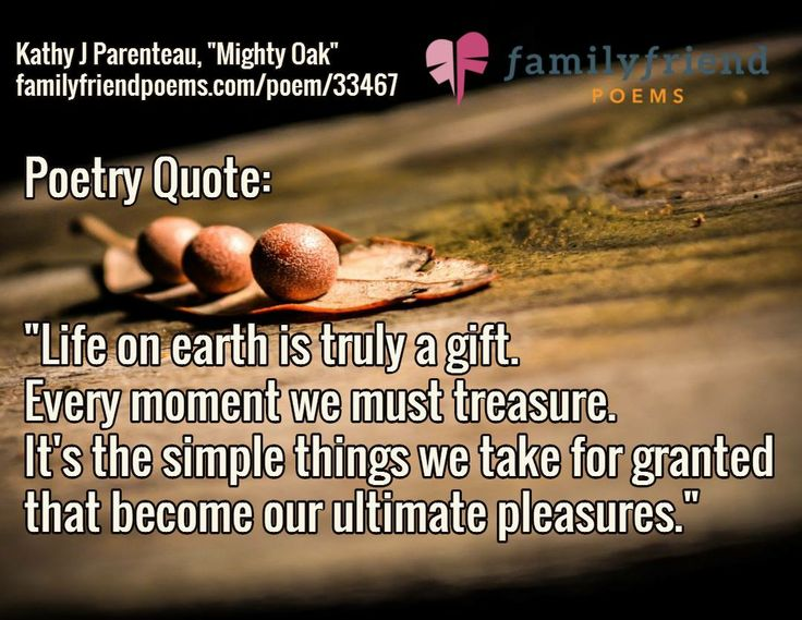 Quotes About Family Strength: Best 25+ Strong Family Quotes Ideas On Pinterest