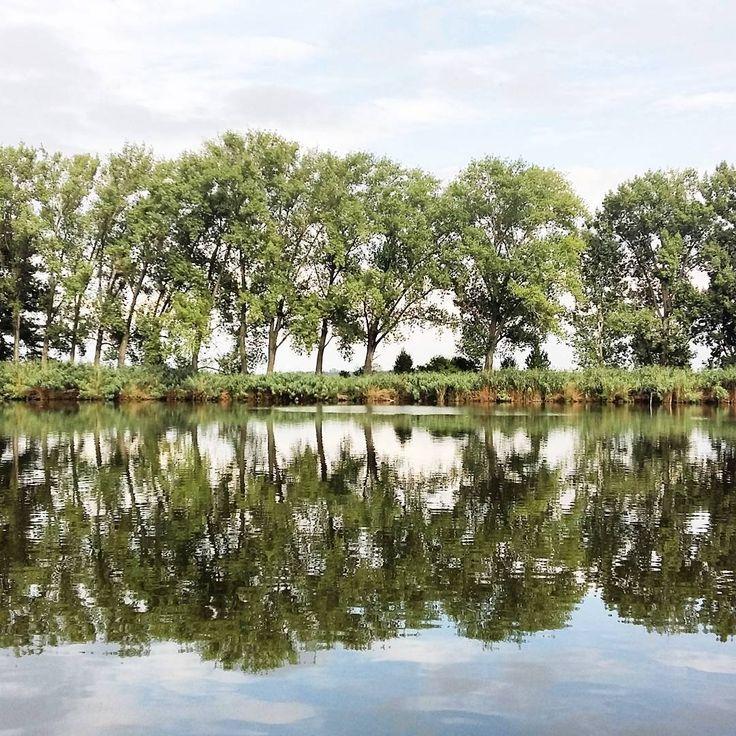 #szajol #samsunggalaxya5 #lake #waterside #beautiful #nature #watersurface #greennature #nofilter #naturelovers