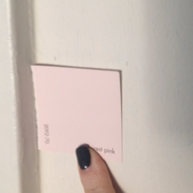 Fairest Pink Paint Room