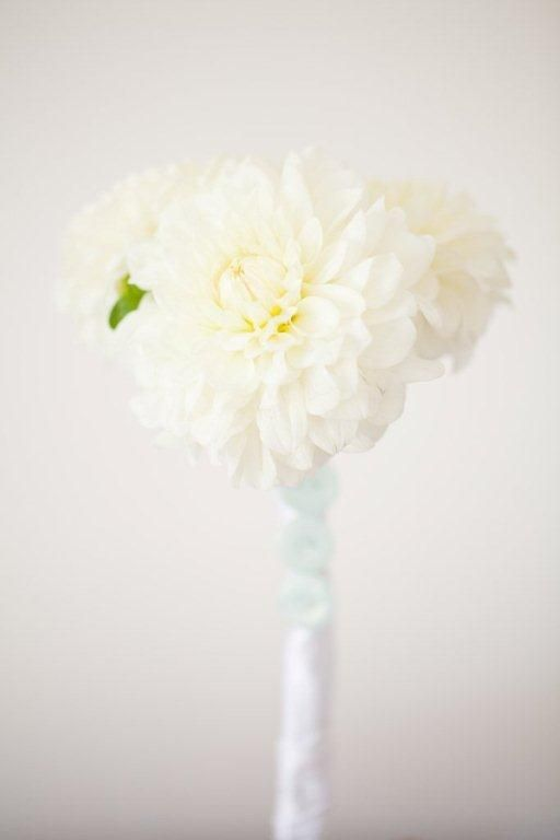 Simple white dahlia's with buttons.