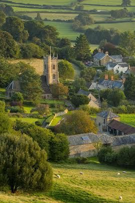 All that lush greenery in Somerset, England.