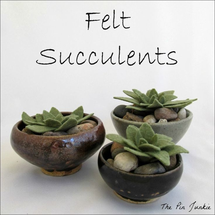 Felt Succulents. Oh, no, don't show me these I'm learning how to grow them! Great idea!