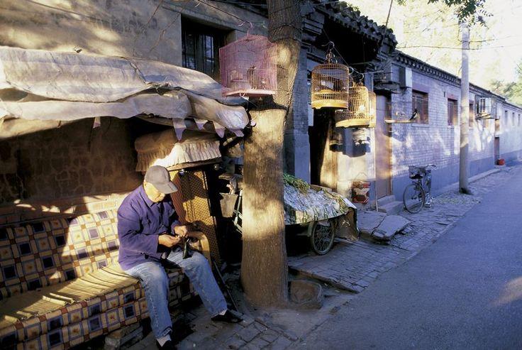 胡同做為北京普通市民生息的場所,可說是北京平民文化的代表,這點明顯反映在胡同的名稱上。胡同名稱多是約定俗成,例如歷史悠久的磚塔胡同,就是源於胡同東口的一座萬松老人塔,這名稱一叫便被叫了七百年。