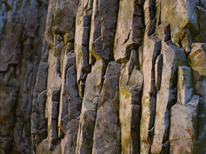 Mossy rock face tileable texture set by Izat Abdraimov on @creativemarket