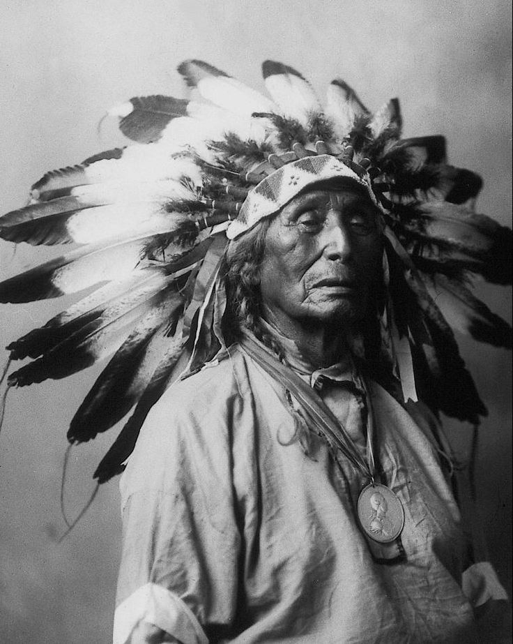 wanduta-native-american-indian (1)