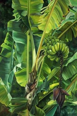 """Garden Bananas"" Hand Signed Limited Edition Giclee 24"" x 36"" at Maui Hands"