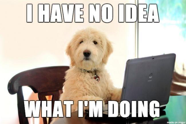 11 Inspirational Dog Memes – My Cinema Lightbox