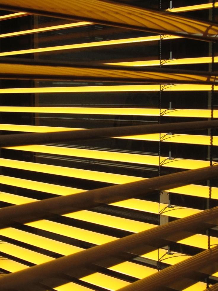 Yellow Venetian blinds.