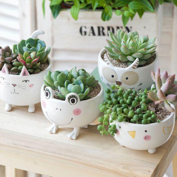 Cute Ceramic Animal Planter From Apollo Box Animal Planters Succulent Pots Ceramic Succulent Planter