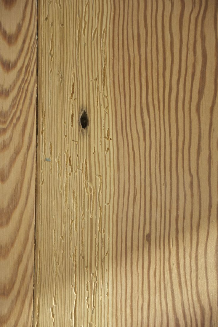 19 Best Pine Flooring Images On Pinterest Flooring Iphone Wallpapers Free Beautiful  HD Wallpapers, Images Over 1000+ [getprihce.gq]