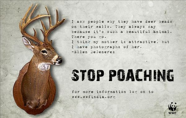 Stop Poaching- A poster for WWF on Behance   protest unit ...