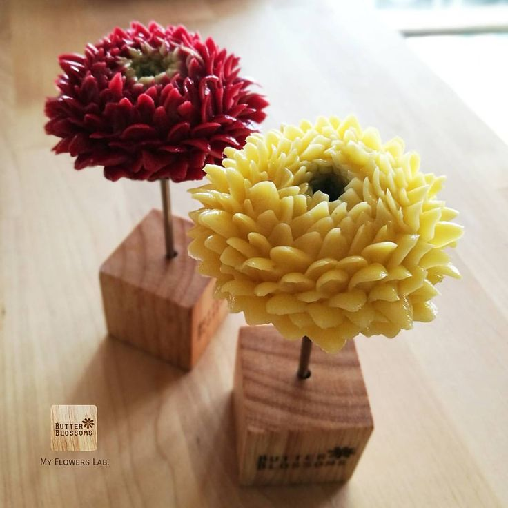 "686 Likes, 4 Comments - Butter&Blossoms. (@butterblossoms) on Instagram: ""Some type of Chrysanthemun Be patient with this flower. In Advance online class so soon Be a…"""